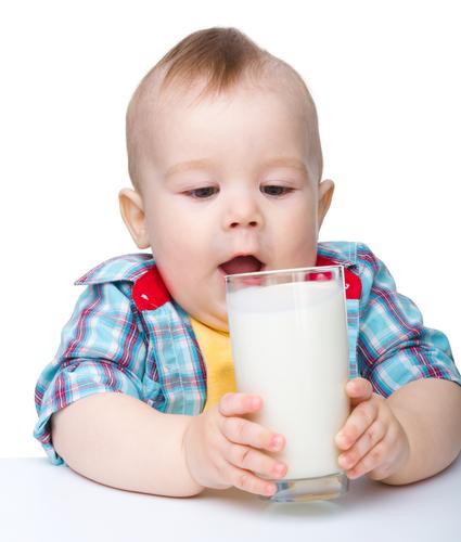 аллергия на лактозу и коровий белок
