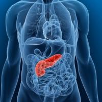 Паразитарные проблемы поджелудочной железы