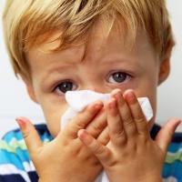 Как отличить ОРЗ от аллергии
