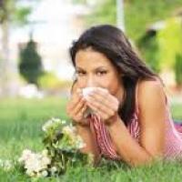 Тяжесть аллергии зависит от погоды