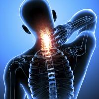 Боль в шее и плечевом поясе – болезнь образованных и молодых