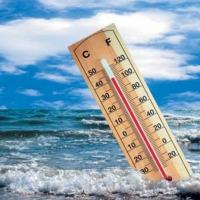 ВОЗ: изменения климата заставят людей чаще болеть