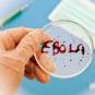 Обнародован угрожающий прогноз по вирусу Эбола