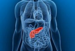 какие паразиты живут в желудке человека картинки