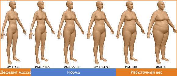 норма уровня холестерина крови взрослых