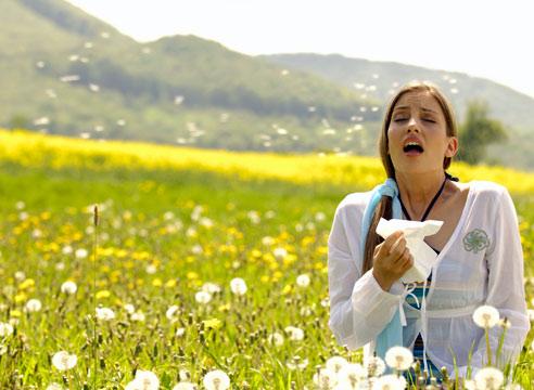 Носовой фильтр защитит от симптомов поллиноза