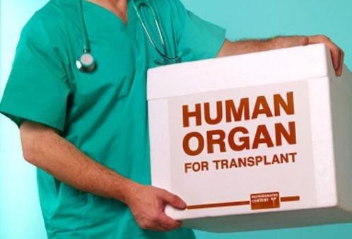 В Украине расширят использование «трупного донорства»