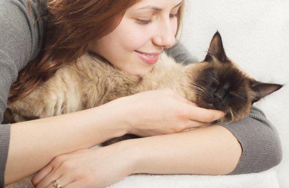 Живые антидепрессанты: как домашние животные помогают справиться с унынием и стрессом