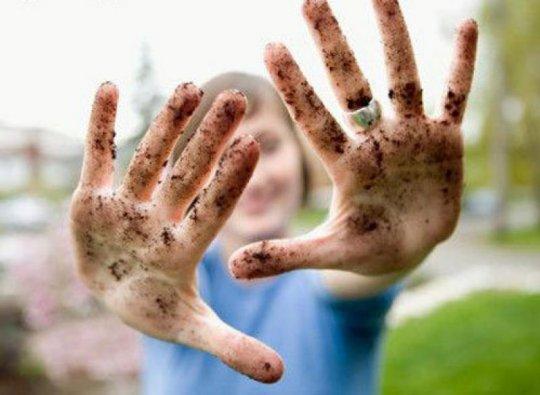 как вытащить глисты в домашних условиях человеку