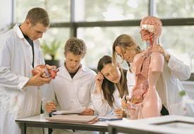 В Украине могут сократить медицинские специальности