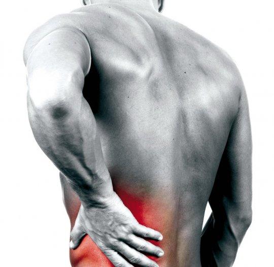 При поликистозе почек может болеть спина