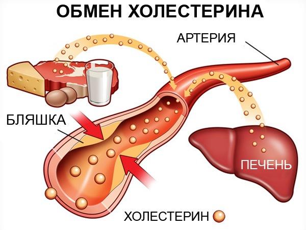 как снизить уровень холестерина без лекарств