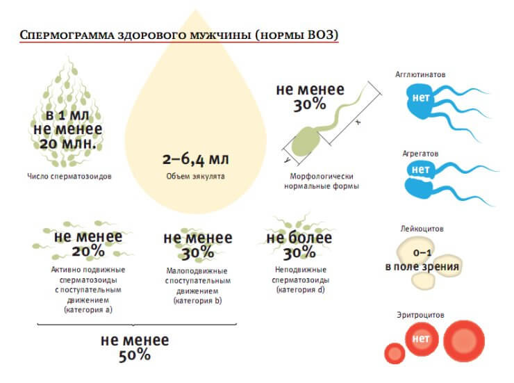 Олегоспермия снижение объема эякулянтаменьше2 мл