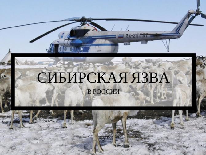 Саратовская область город маркс поликлиника 1