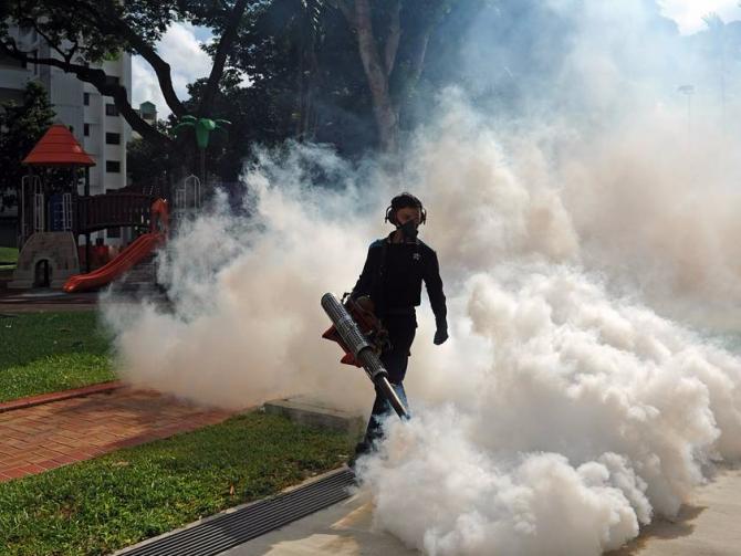 Неменее 150 случаев заражения вирусом Зика зафиксировали вСингапуре