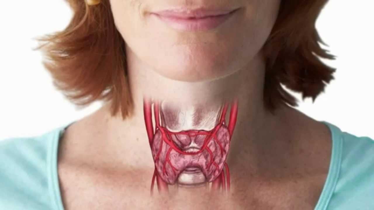 Злокачественные опухоли щитовидной железы: симптоматика и методы лечения