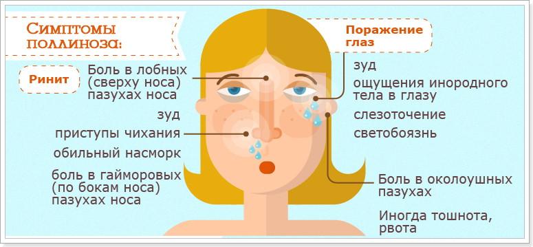 аллергия на полынь как лечить