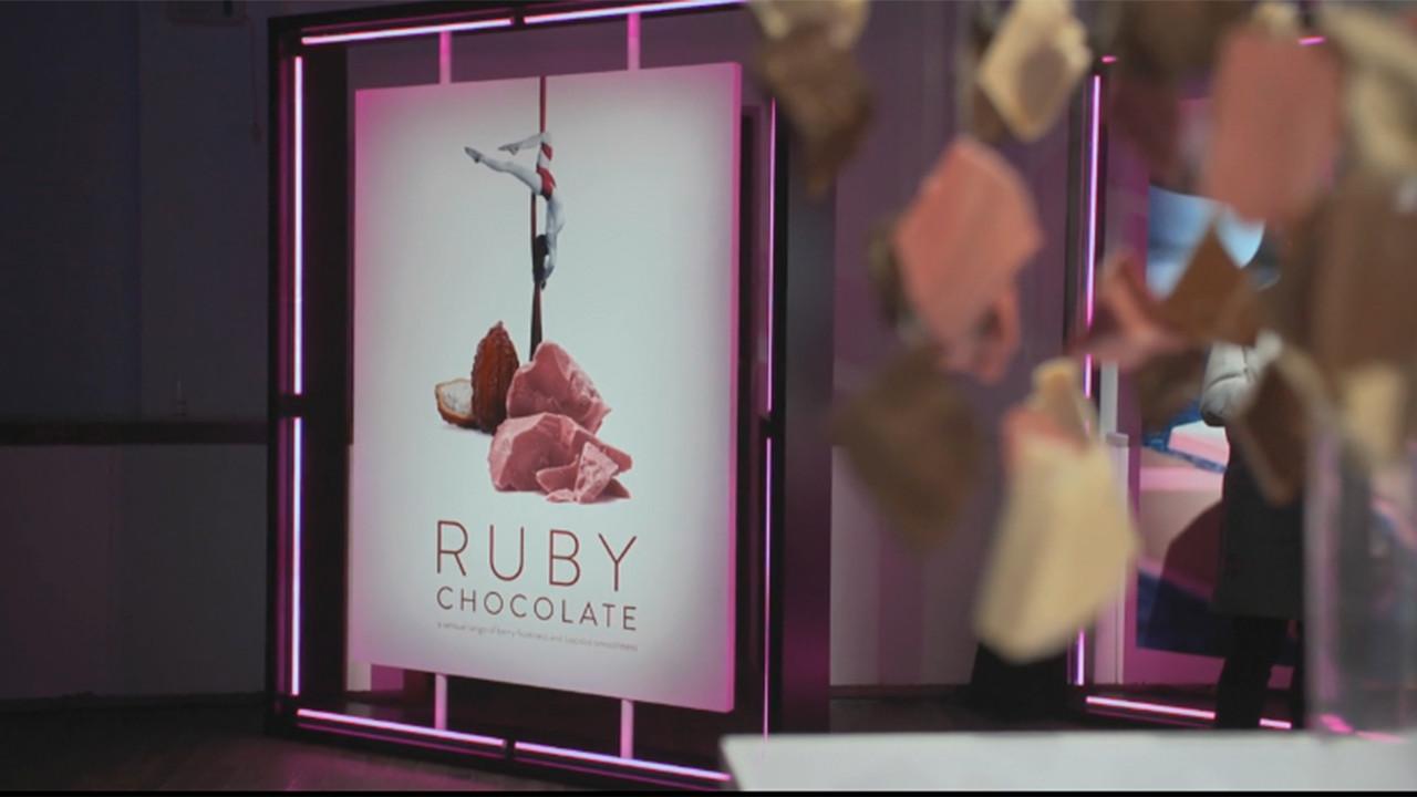 Говорят, купить розовый шоколад пока невозможно, но уже сейчас можно увидеть бобы, из которых он был приготовлен – они действительно розового цвета!