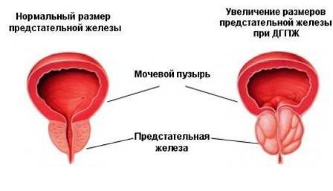 v-russkuyu-konchayut-tolpoy