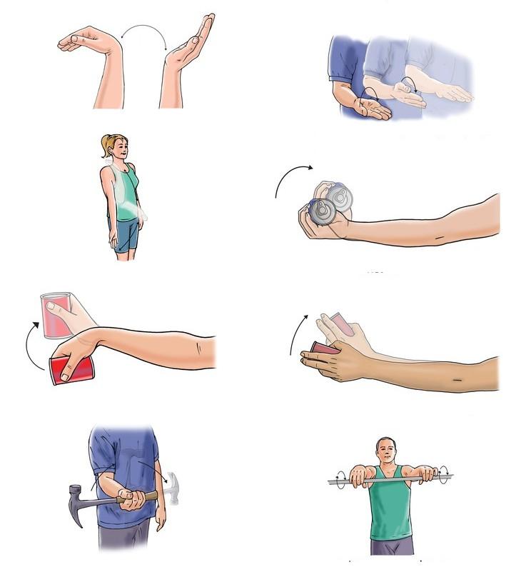 Разработка плечевого сустава после перелома головки узи тазобедренного сустава у детей 7 лет