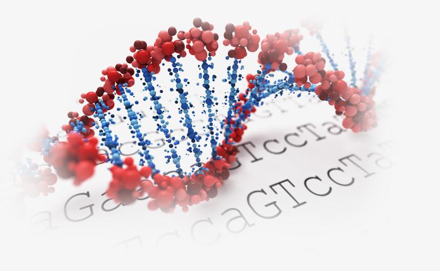 Генетические аномалии