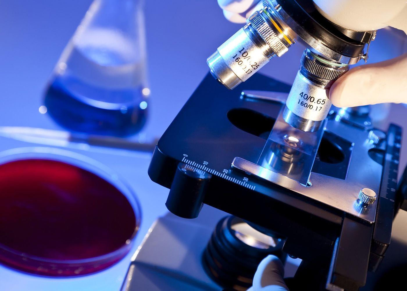 Диагностическое значение анализа крови на иммуноглобулин Е - изображение №1