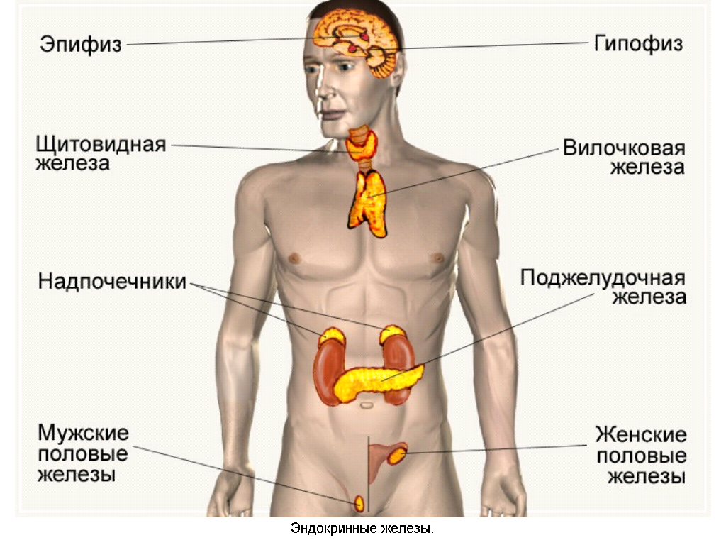 Гиперфункция гипофиза