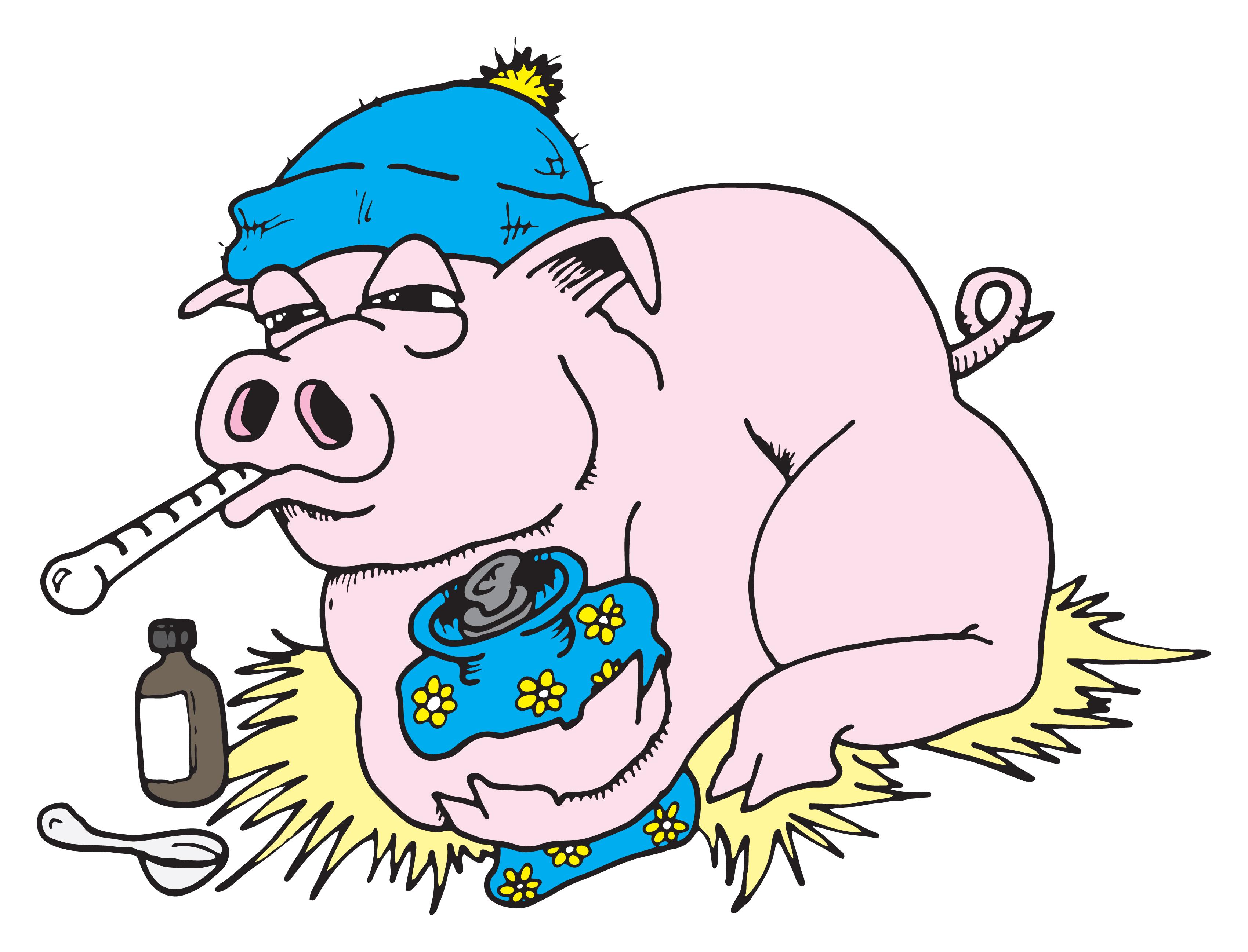 Свиной грипп (калифорнийский грипп)