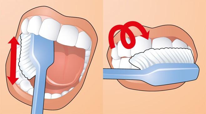 Как чистить зубы: Движения щеткой по жевательной поверхности зубов и заключительные круговые движения